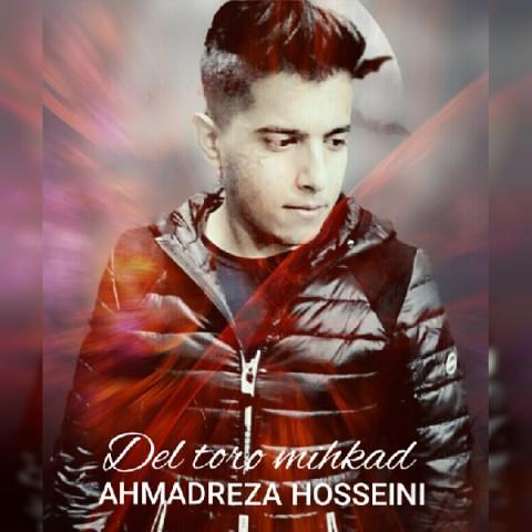 دانلود آهنگ جدید احمدرضا حسینی دل تورو میخواد
