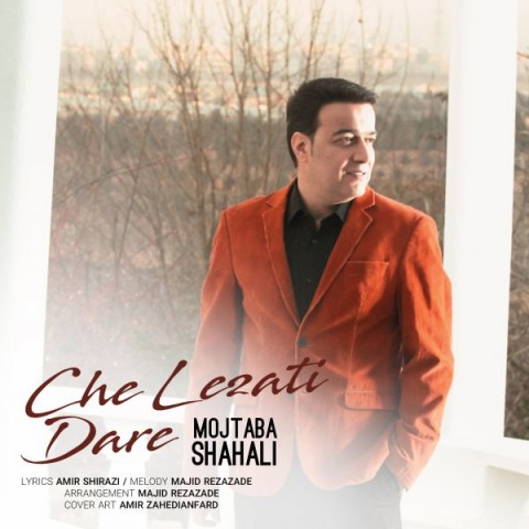 دانلود آهنگ جدید مجتبی شاه علی چه لذتی داره
