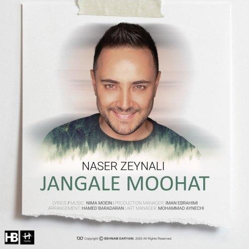 دانلود آهنگ جدید ناصر زینلی جنگل موهات