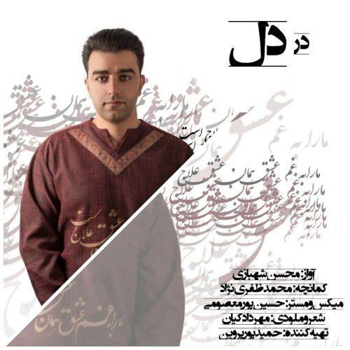 دانلود آهنگ جدید محسن شهبازی در دل
